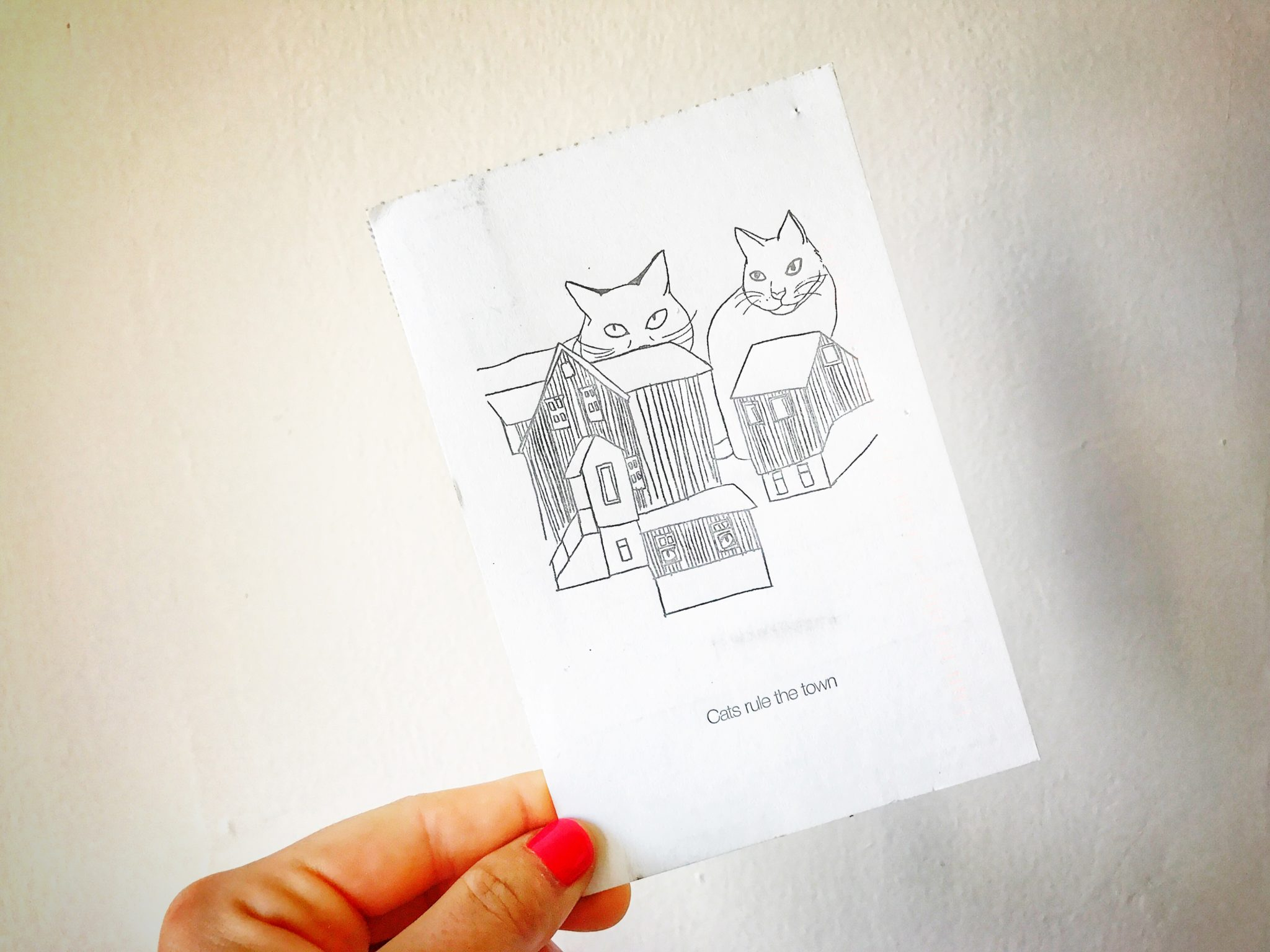 postcard image of cats ontop of homes in iceland