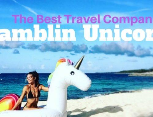My Favorite Travel Companion is a Unicorn