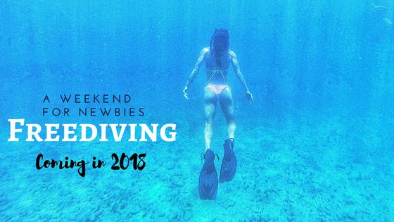 Cyndi Cramblett freediving