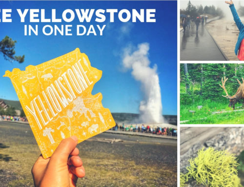 The Best Stops in Yellowstone