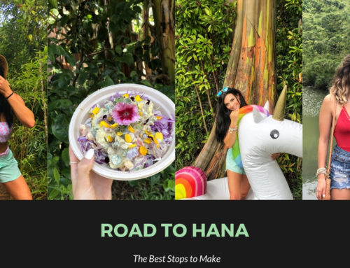 The best stops on the Road to Hana