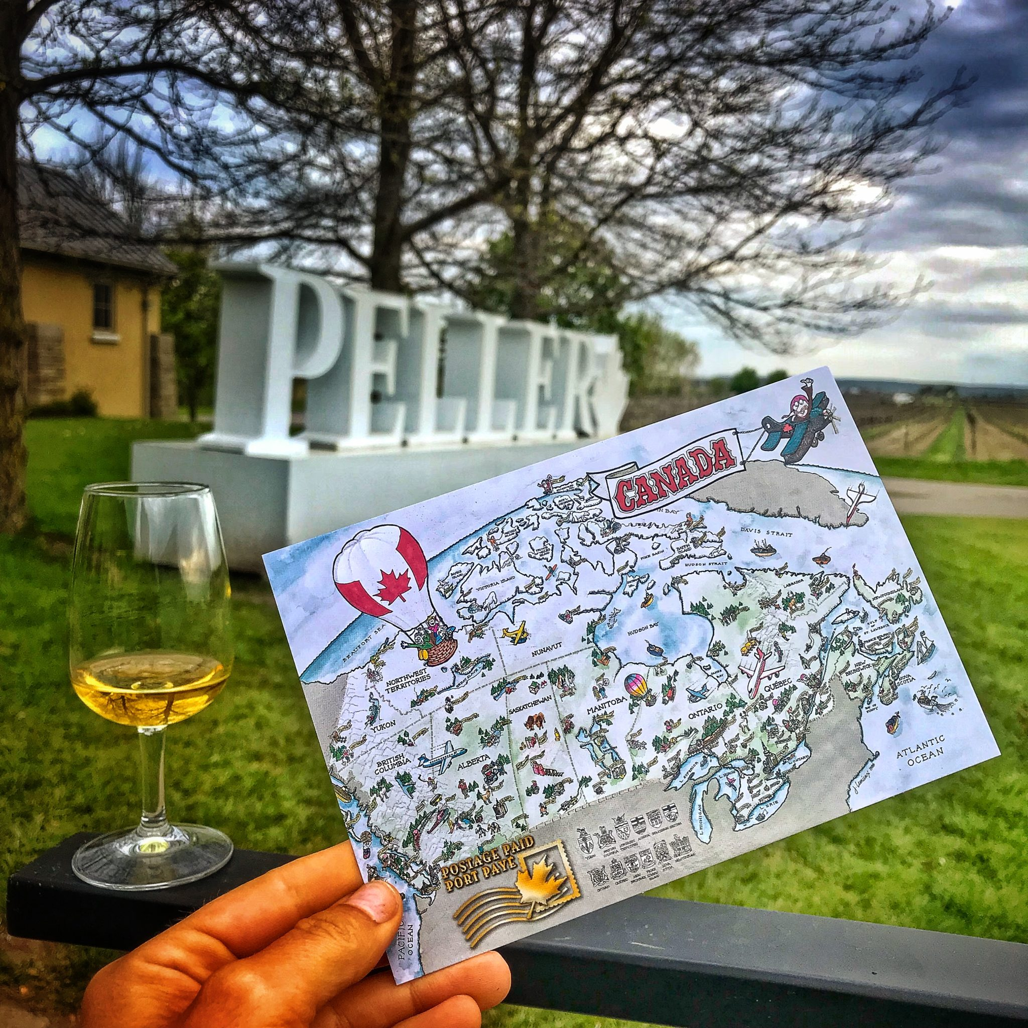 Postcard Niagara Wine Region